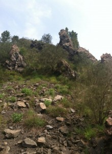 The Hell valley, with shrubbery and outcroppings of solidified lava.